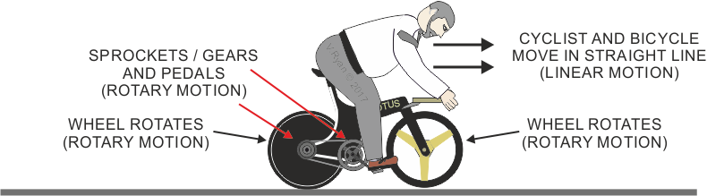 Examination questions types of movement motion clear identify with labels notes and arrows all the types of motion that you see in the diagram ccuart Images