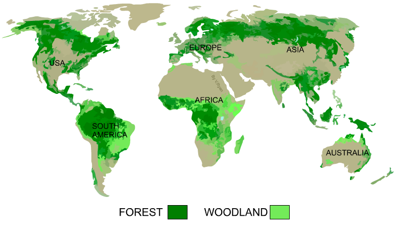Temperate Rainforest World Map.Forests And Woodlands World Distribution Of Natural Woods